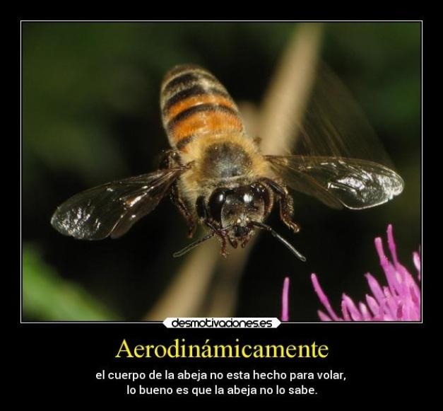 NASA -ABEJA - AERODINAMICAMENTE